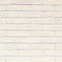 Плитка фасадная облицовочная Wit Speciaal